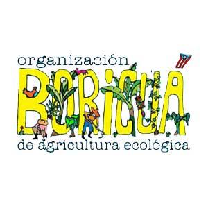 Organización Boricuá