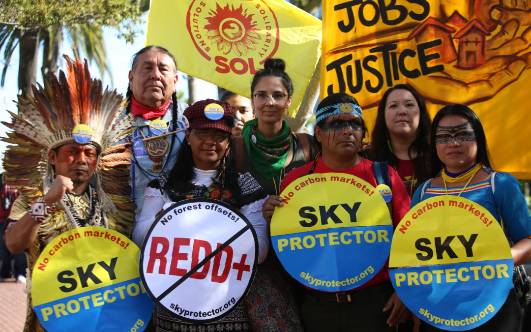 Inexorable Solidarity with the Indigenous Peoples of Brazil